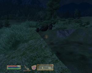 Oblivion_bug
