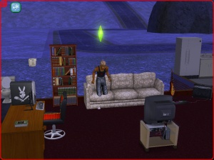 Sims2_bug_2