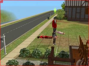 Sims2_bug_3