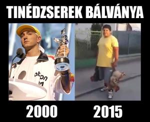 Bözsi_Néni_meme